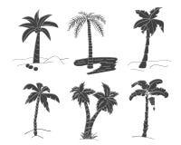 Силуэты нарисованных рукой пальм Стоковое Фото