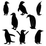 Силуэты пингвина Стоковое Изображение RF