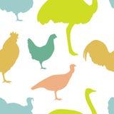 Силуэты птицы фермы Стоковые Изображения RF