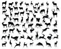 Силуэты собрания оленей - вектор бесплатная иллюстрация