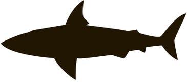 Силуэт акулы Стоковые Фото