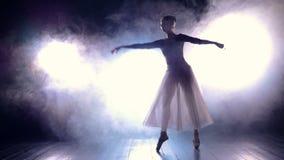 Силуэт балерины танцев Slowmotion HD акции видеоматериалы