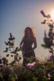 Силуэт беременной женщины на заходе солнца Стоковая Фотография RF