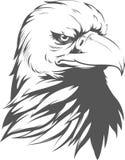 Силуэт белоголового орлана Стоковые Изображения