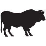 Силуэт большого быка Стоковые Изображения