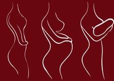 Силуэт вектора беременной девушки Этап беременности Стоковое Изображение