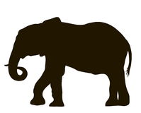 Силуэт вектора двигать слона бесплатная иллюстрация