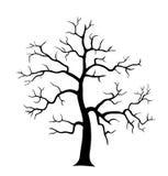 Силуэт 2 вектора дерева Стоковая Фотография RF