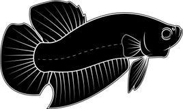 Силуэт вектора рыб Betta Стоковая Фотография RF