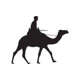 Силуэт верблюда Стоковая Фотография RF