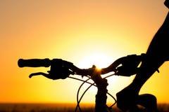 Силуэт велосипеда катит внутри поле Стоковые Изображения RF