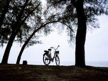 Силуэт велосипеда на заходе солнца Ландшафт ЛЕТА Стоковое Фото