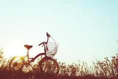 Силуэт велосипеда на траве Стоковое Фото