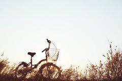 Силуэт велосипеда на траве Стоковые Изображения RF