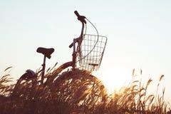 Силуэт велосипеда на траве Стоковая Фотография RF