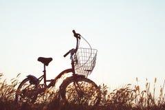 Силуэт велосипеда на траве Стоковые Фотографии RF