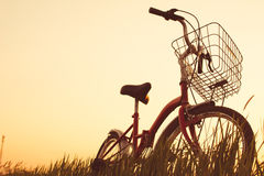 Силуэт велосипеда на траве Стоковое Изображение