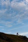 Силуэт велосипедиста по пересеченной местностей идя покатый Стоковая Фотография RF
