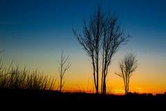 Силуэт восхода солнца Стоковое Изображение RF