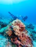 Силуэт водолаза скуба около дна моря Стоковые Фотографии RF