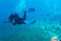 Силуэт водолаза скуба около дна моря Стоковая Фотография RF