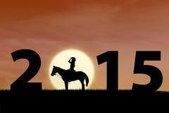 Силуэт всадника лошади Стоковая Фотография