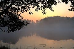 Силуэт выходит граница рамки с озером и предпосылкой рассвета стоковые фотографии rf
