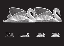 Силуэт лебедя Стоковая Фотография RF