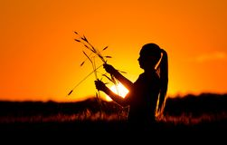 Силуэт девушки в пшеничном поле Стоковые Изображения