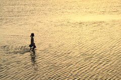 Силуэт девушки идя в море Стоковое фото RF