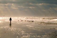 Силуэт девушки на пляже Северного моря Стоковые Изображения