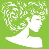 Силуэт девушки с первоначально стилем причёсок Стоковые Изображения