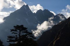 Силуэт дерева на предпосылке гор в Непале Стоковое Изображение