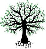 Силуэт дерева с зелеными листьями Иллюстрация вектора