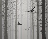 Силуэт леса с летящими птицами Стоковые Изображения RF