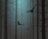 Силуэт леса с летящими птицами Стоковая Фотография