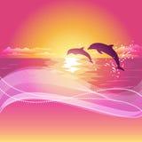 Силуэт 2 дельфинов на заходе солнца Резюмируйте предпосылку с космосом для вашего текста EPS10 Стоковые Изображения