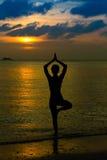 Силуэт женщин йоги Стоковое Фото