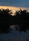 Силуэт захода солнца восхода солнца Стоковые Изображения