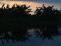 Силуэт захода солнца восхода солнца Стоковое Фото