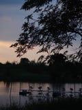 Силуэт захода солнца восхода солнца Стоковые Фото