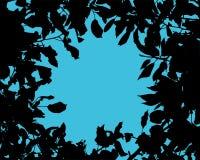 Силуэт листьев дерева Стоковое фото RF