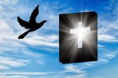 Силуэт книг библии Стоковое Изображение