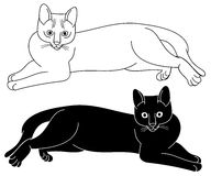 Силуэт кота Стоковое Изображение RF
