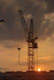 Силуэт крана башни на строительной площадке с предпосылкой здания города Стоковое Изображение RF