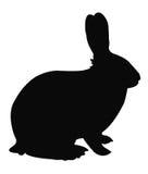 Силуэт кролика Стоковое Изображение RF