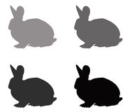 Силуэт кролика Стоковые Фотографии RF