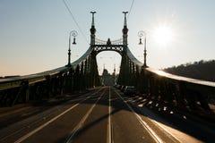 Силуэт моста свободы в Будапеште, Венгрии Стоковые Фото