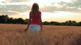 Силуэт молодой женщины идя в поле на заходе солнца, дышая в воздухе и штрихуя руку колоска сток-видео