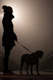 Силуэт ночи девушки с собакой Взгляд со стороны Стоковая Фотография